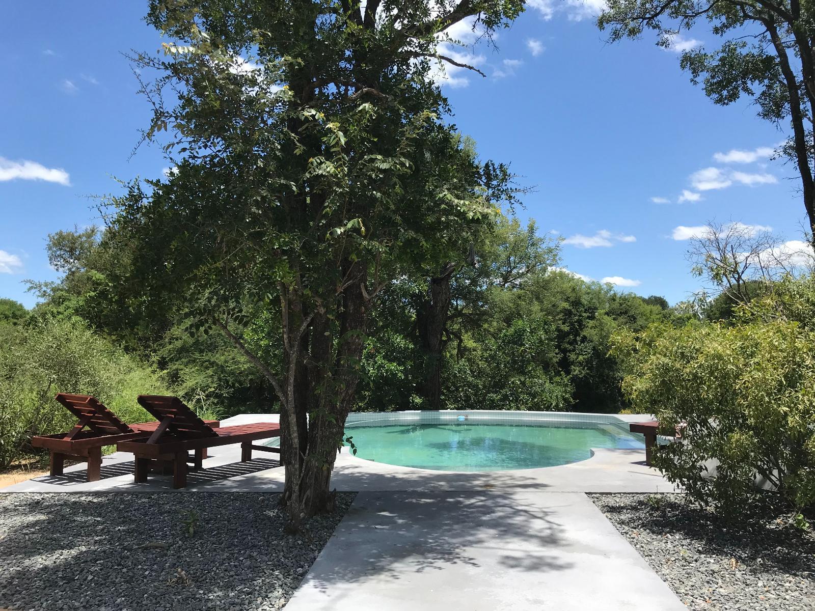 Leadwood Tree Safari Lodge
