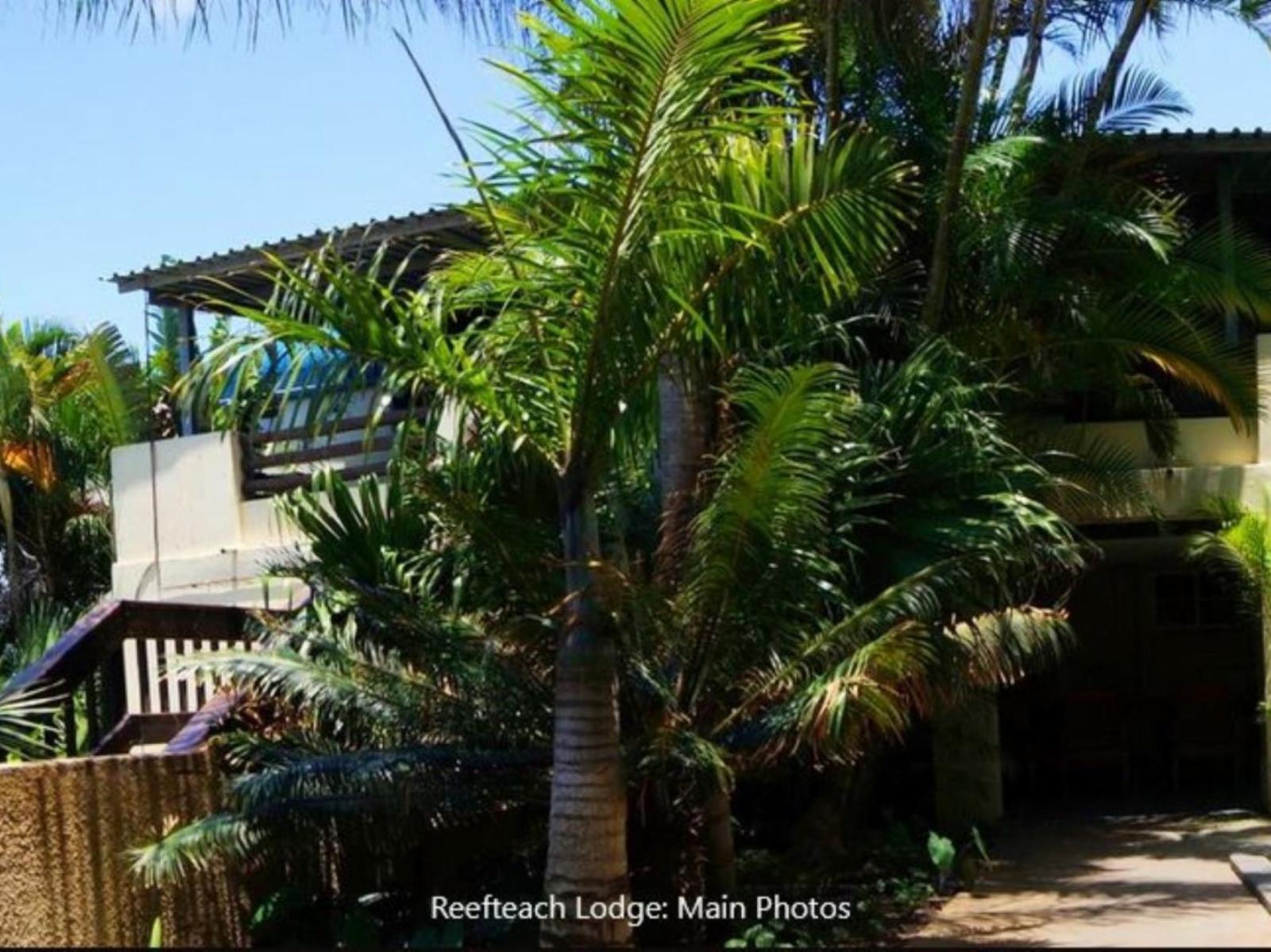 Reefteach Lodge