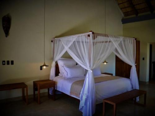 King Suite: King Bed & Garden view