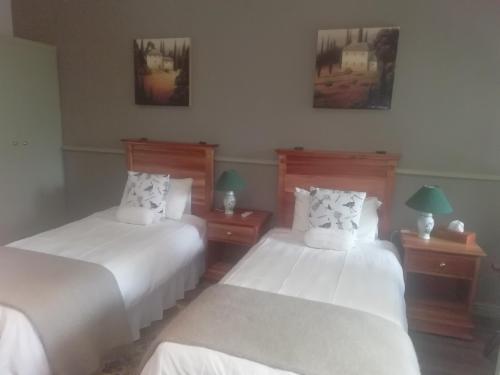 Room 11 Twin beds