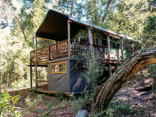 Tented Treehouse Sleeper Couch
