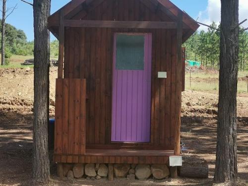 Campsite - Purple