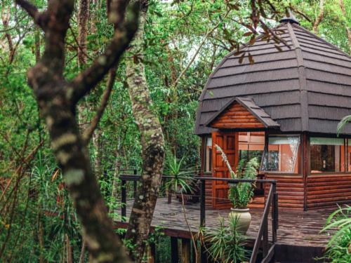 Luxury Forest & River View Suites